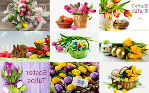 Easter Tulips - Ostern Tulpen
