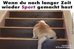 wenn-du-nach-langer-Zeit-wieder-Sport-gemacht-hast.mp4 auf www.funpot.net