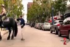 Ich glaub mich tritt ein Pferd