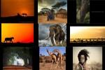 Africa-Geographic-Fotograf-des-Jahres-2018.ppsx auf www.funpot.net
