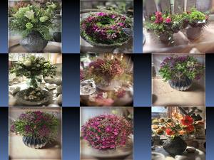 Beautyful - Blumen