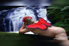 Der magisch denkende Schmetterling