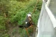 Katzenlift