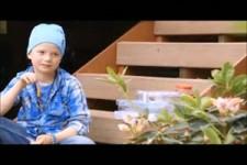 Ein Mädchen fütterte jahrelang Krähen