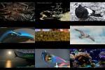 FvK---Verschiedene-Motive-3.ppsx auf www.funpot.net