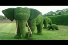 Tolle Garten Ideen