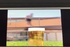Bild Sprung ins Bier