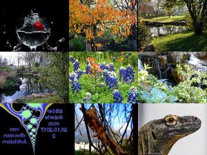Bilder-Galerie vom 28102017 2