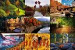 die-Blätter-fallen.ppsx auf www.funpot.net