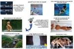 Wasser-ist-ein-wunderbares-Element.pps auf www.funpot.net