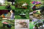 Floral-Wheelbarrows---Blumen-Schubkarren.ppsx auf www.funpot.net