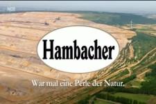 Deutschland holzt sich ab - extra 3 NDR