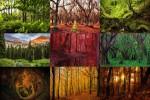 Bäume-3.ppsx auf www.funpot.net