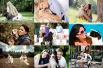 Girls-&-Dogs---Mädchen-und-Hunde.ppsx auf www.funpot.net