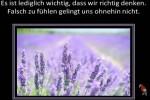 Gedanken-über-Gefühle-von-Ernst-Ferstl-1.pps auf www.funpot.net
