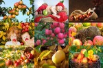 Apples-1---Äpfel-1.ppsx auf www.funpot.net
