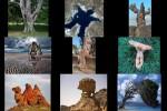 Naturwunder.pps auf www.funpot.net