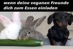 Zum-Essen-bei-Freunden.mp4 auf www.funpot.net