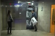 Die verrückte Fahrt mit dem Aufzug