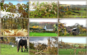 Autumn in the Hills - Herbst in den Hügeln