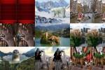Gigantische-Tiere.ppsx auf www.funpot.net