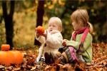 Autumn-01---Herbst-01.mp4 auf www.funpot.net