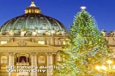 Weihnachtsbäume in aller Welt