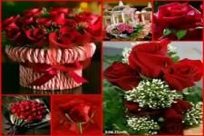 Valentinsgruss