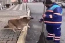 Hunde brauchen auch Liebe