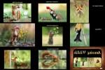 Amusing-Wildlife---Amüsante-Tierwelt.pps auf www.funpot.net