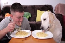 Heute gibt es Spaghetti