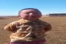 Die Mongolei sucht den Superstar