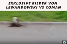 Niko Kovac nennt es Handgreiflichkeiten.Lewandowski vs Coman