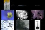TransNatura-International-Nature-Photo-Contest--.ppsx auf www.funpot.net