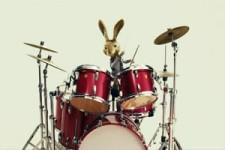 Osterhase am Schlagzeug