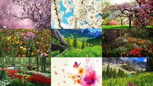 Frühling 25