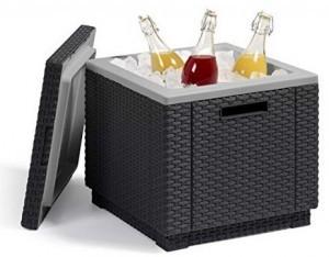 Beistelltisch und Kühlbox in einem!