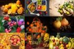 Früchte-6.ppsx auf www.funpot.net