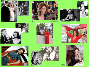 Sophia Loren 85