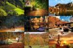 Herbstblätter-im-Wind.ppsx auf www.funpot.net