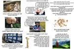 Wer-suchet-der-findet.pps auf www.funpot.net