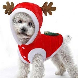 Weihnachts-Kostüm für Hunde und Katzen!