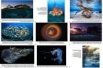 Underwater-Photographer-of-the-Year-2019.pps auf www.funpot.net
