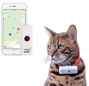 GPS Tracker für Katzen!