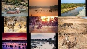 Luangwa Park - Sambia