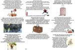 Sieben-Sachen-für-den-Koffer.pps auf www.funpot.net