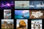 Bilder-Galerie-.pps auf www.funpot.net