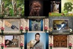 Lustige-Tierbilder.ppsx auf www.funpot.net